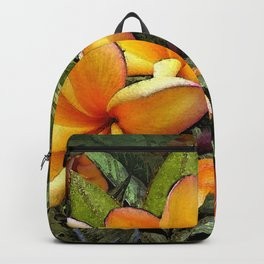Hawaiian Plumeria at First Light Backpack