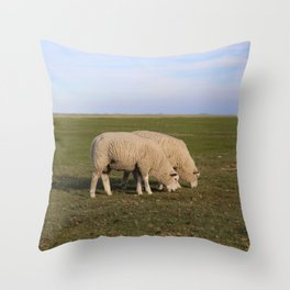 Grasende Schafe auf Nordseeinsel Pellworm / Grazing Sheep on green Field Throw Pillow