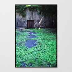 Over the Hill and through the Swamp, Color Canvas Print