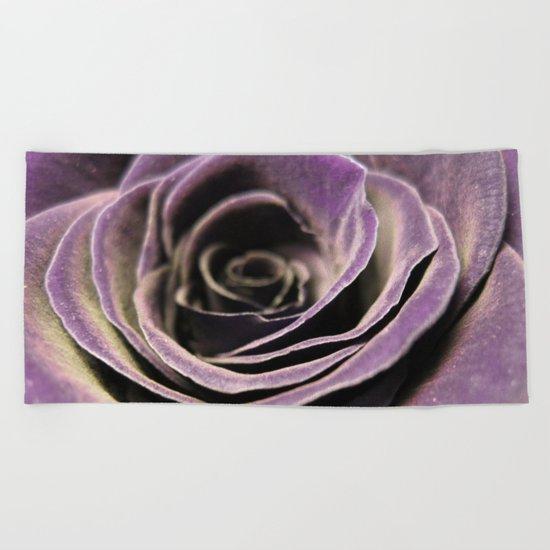Purple velvet rose Beach Towel