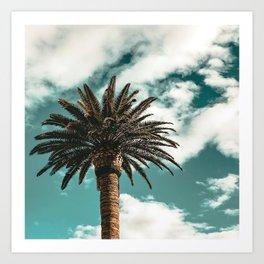 Lush Palm {1 of 2} / Teal Blue Sky Tree Leaves Art Print Art Print