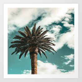 Lush Palm {1 of 2} / Teal Blue Sky Tree Leaves Art Print Art Print