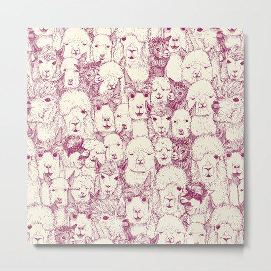 just alpacas cherry pearl Metal Print