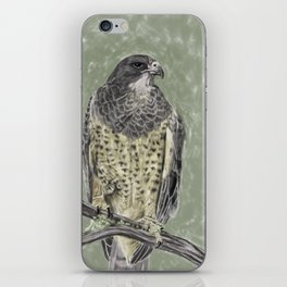 Black-chested buzzard-eagle (Geranoaetus melanoleucus) iPhone Skin