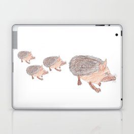 Desert Hedgehog Laptop & iPad Skin