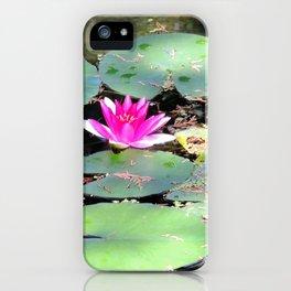 Beijing Imperial garden | Jardin Impérial iPhone Case