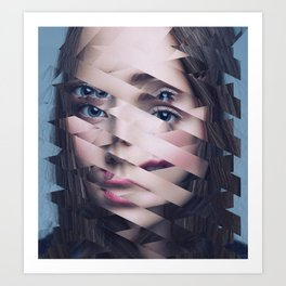 Another Portrait Disaster · N3 Art Print