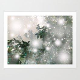 magic mist Art Print