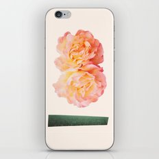 peachy keen iPhone & iPod Skin