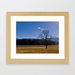 Fall Cove Framed Art Print