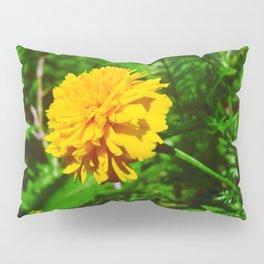 Goldquelle Coneflower Pillow Sham