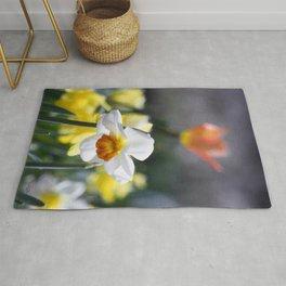 Demure Daffodil Rug