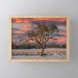 The lonely tree Framed Mini Art Print