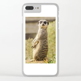 Sentry Duty Clear iPhone Case