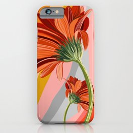 Flower petals stripes and bright Gerbera iPhone Case