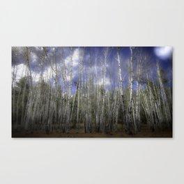 Aspen Canvas Print