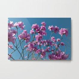 Azalea Tree Flowers Metal Print