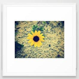 ☮☮ Framed Art Print