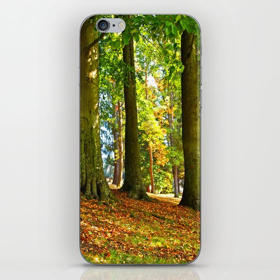 Autumn beauty iPhone & iPod Skin