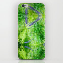 Picnic On The Common iPhone Skin