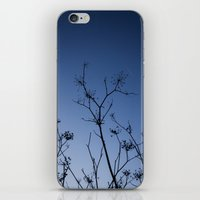 night sky iPhone & iPod Skins featuring Night Sky by Shy Photog