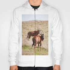 Wide open spaces Hoody