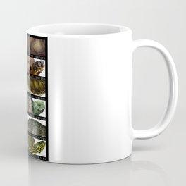 Turtles of the World Coffee Mug