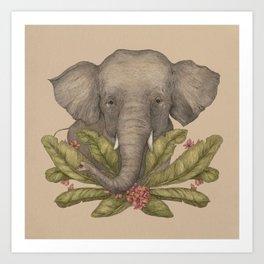 Borneo Pygmy Elephant Art Print