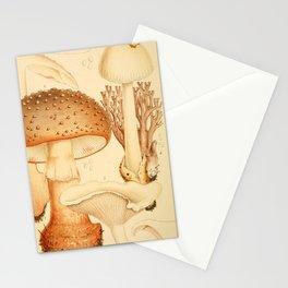 British Edible Fungi Stationery Cards