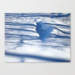 Snow Shadows Canvas Print