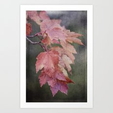 fall cascade Art Print