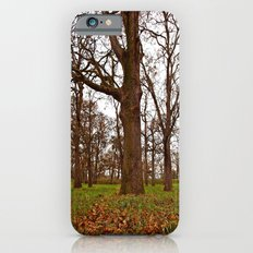 Oak grove Slim Case iPhone 6s