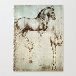 "Leonardo da Vinci ""Gran Cavallo"" Canvas Print"