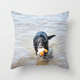 Black Labrador Retriever 3 Throw Pillow