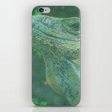 Wild Iguana iPhone & iPod Skin