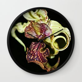 Dendrobium Spectible (The Alien Orchid) Wall Clock