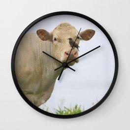 Cow Bird Wall Clock