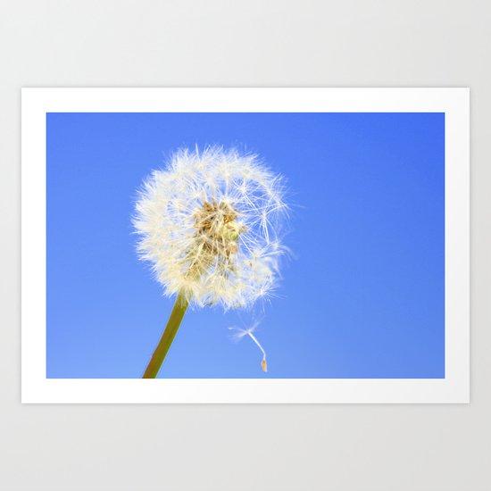 Wishing Flower Art Print