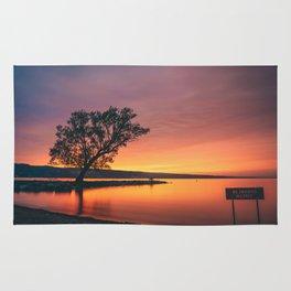 Seneca Lake - No Swimming Allowed Rug