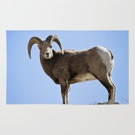 Bighorn Sheep Rug