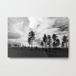 Dark Sky Metal Print