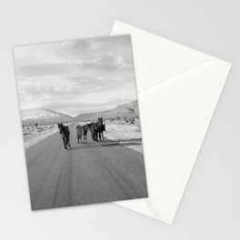 Spring Mountain Wild Horses Stationery Cards
