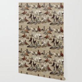 Vintage Pigeon Breeds Chart Wallpaper