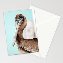 Pelican Blues Stationery Cards