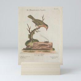 vermivora scarabaeus capricornis3 Mini Art Print