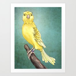 Waterslager Canary Art Print