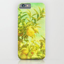 Mandarine Tree iPhone Case