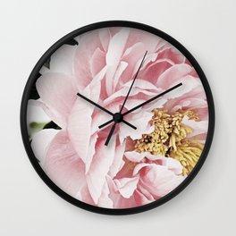 Peony, Flower, Pink, Plant, Trendy decor, Interior, Wall art, Photo Wall Clock