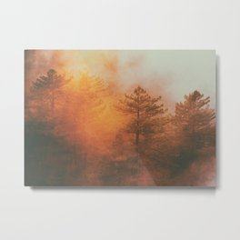 Foggy Sunrise Over Forest Metal Print