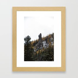 Larches in Snow pt. 2 Framed Art Print